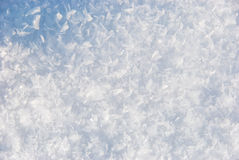 Snow texture. Snow close-up texture. You can view single snowflakes in large size photo Royalty Free Stock Images
