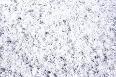 Snow texture background Stock Images