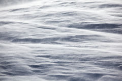 Snow texture in windy day Stock Images