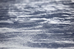 Snow texture in windy day Royalty Free Stock Photography