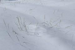 Snow texturerar Royaltyfria Foton