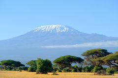 Snow on top of Mount Kilimanjaro Royalty Free Stock Photos