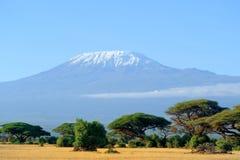 Snow on top of Mount Kilimanjaro Royalty Free Stock Photos