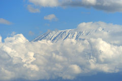 Snow on top of Mount Kilimanjaro Stock Images