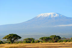 Snow on top of Mount Kilimanjaro Royalty Free Stock Image