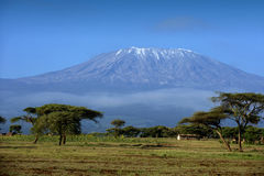 Snow on top of Mount Kilimanjaro in Amboseli royalty free stock photo