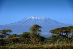 Snow on top of Mount Kilimanjaro in Amboseli Stock Images