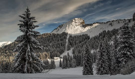 Snow on the top of a mountain Stock Photography