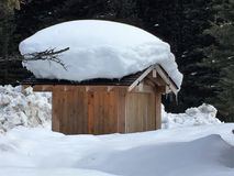 Snow Capped Wooden Shed in Wintertime. Snow on top of wooden shed building, with background of Pine Trees and snow, Banff National Park, Canada. Winter April Stock Images