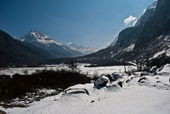 Snow topped mountains in Yumthang Valley. Royalty Free Stock Images