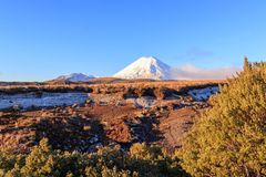Snow tops of volcanoes at Tongariro National Park. New Zealand Stock Photography