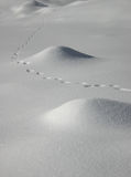 Snow traces. Traces on the snow. snow hills Stock Image