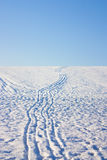Snow tracks Royalty Free Stock Photography