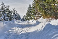 Snow Trail. Winter snow trail Royalty Free Stock Images