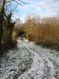Snow and trail in the countryside Stock Image