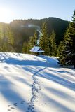 Snow trail that leads to a wooden cottage in the mountains Royalty Free Stock Photo