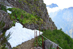 Snow on a trail in Madeiran mountains stock image