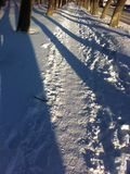 The trail in the snow. Snow trail at sunset in the spring in the Urals Stock Image