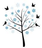 Snow tree Stock Photos
