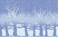 Snow_tree Stock Image