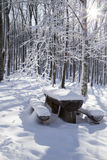 Snow tree. Snow coverd bench and table Royalty Free Stock Images
