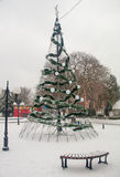 Snow, Tree, New Year in Pomorie, Bulgaria Royalty Free Stock Image