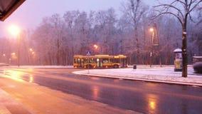 Snow In Lodz Poland 4k. Snow In Tree with Snow, Lodz Poland Thursday, November 30, 2017 stock footage