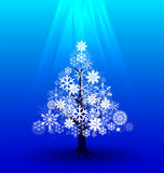 Snow tree under light  Royalty Free Stock Image