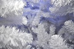 Snow Tree White Christmas Background Royalty Free Stock Photography