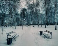 Snow, trees, sky, birch, maple, elm. Snow, trees, benches, lanterns, paths, paths, playground royalty free stock image