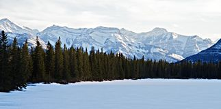Snow Trees Mountains and Ice. Landscape view at a frozen lake with evergreen trees and mountains in the background stock images