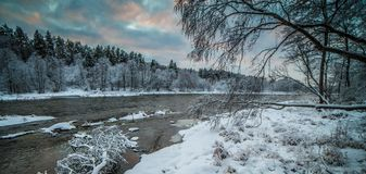 Winter panorama landscape. Snow on trees near river, cold winter royalty free stock photography