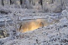 Snow, Trees, Winter, Water, Season Royalty Free Stock Image