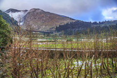 Snow in Tropical Yangmingshan mountain Royalty Free Stock Images