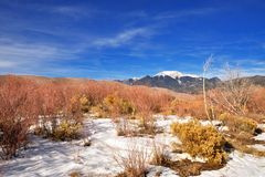 Snow and vegetation at great sand dunes. National park, snowy mountain in the background, Colorado Stock Photos