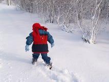 Snow Venture. Little boy walking through the snow stock image