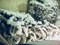 Bicycles Covered by Snow in Winter Day stock photos