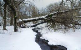 Snow view Stock Photo