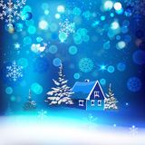 Snow village. Vector winter background with beautiful various snowflakes and fir-tree branch Stock Photo