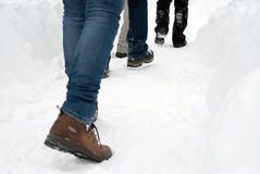 Snow walk. People walking on a path through the snow coat Stock Image