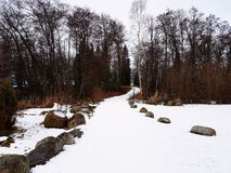 Snow walkway. A snow walkway between trees Stock Image