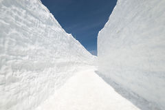 Snow wall. At Kurobe alpine in Toyama, Japan Royalty Free Stock Images