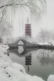 After the snow Wan Shan Tower Stock Images