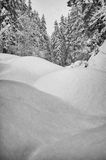 Snow wave winter landscape Royalty Free Stock Image