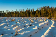 Snow waves deeply plowed field. Snow waves deeply plowed field in the rays of the setting winter sun Royalty Free Stock Images