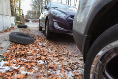 Snow wheels installing for winter season at autumn Royalty Free Stock Image