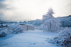 Snow white. Snow on bushes fence and trees in garden Stock Photography