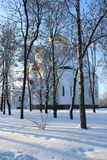 Snow-white cathedral with golden domes. View of the snow-white cathedral with golden domes through the trees royalty free stock image