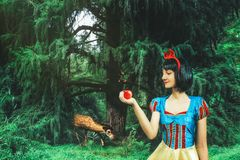 Snow White cosplay girl in the mysterious forest. Artistic processing.  royalty free stock image