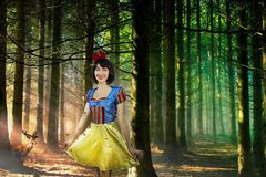Snow White cosplay in the mysterious forest closeup. Artistic processing. Snow White in the mysterious forest closeup. Artistic processing royalty free stock photography